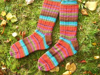 Regia plain socks