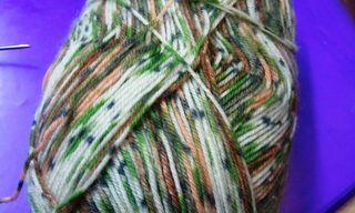 Austerman sock yarn