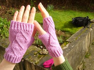 Mock calbe mitts2