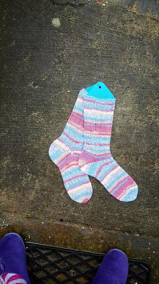 6fach socks 16.4