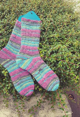 Mr 6fach socks 0617