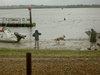 Mudeford_rain2