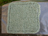 Washcloth_green